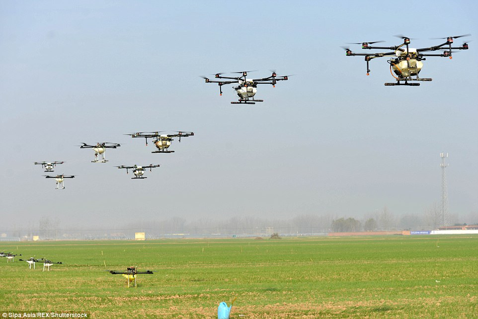 害虫终结者!农民使用无人机杀虫 效率顶10人