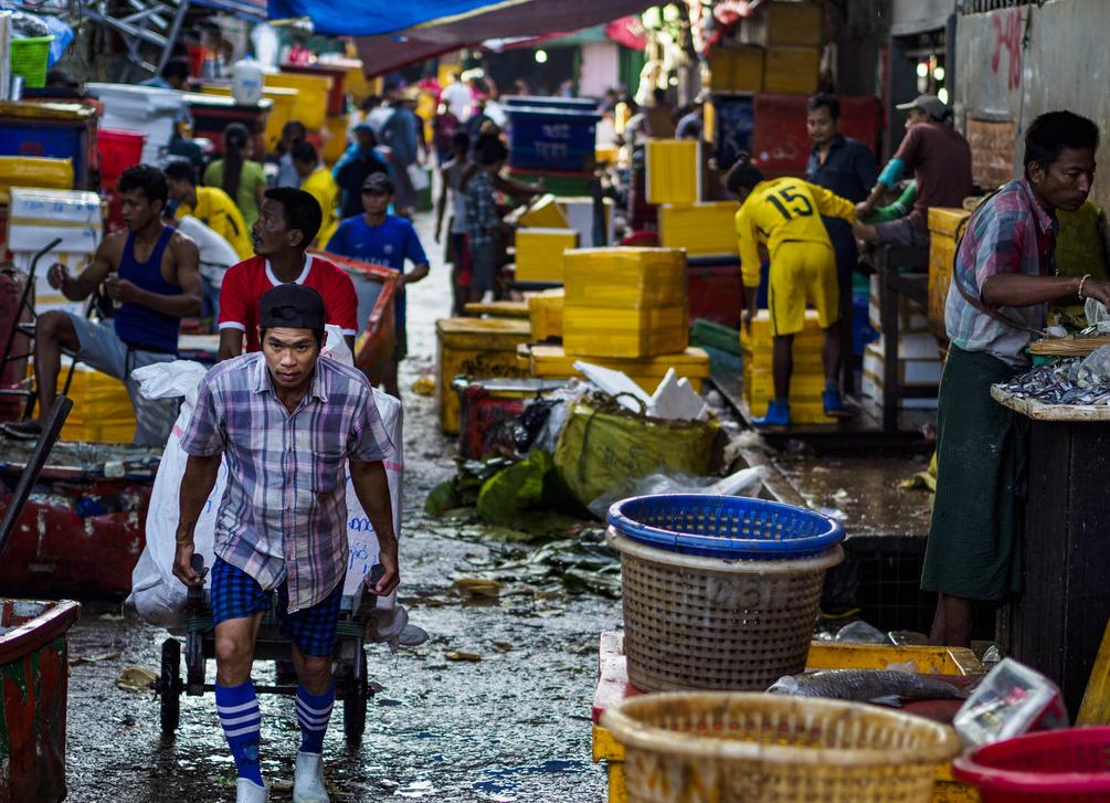 走进缅甸仰光最大批发鱼市场 体味市井生活艰辛