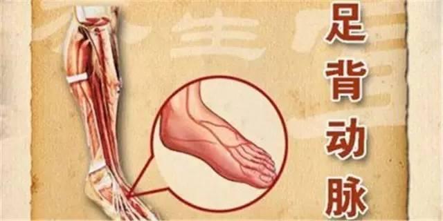 血管堵塞这个部位最先知道!早获得信号早救命!