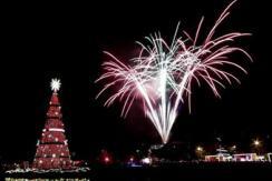 巴西圣保罗点亮圣诞树 梦幻闪耀黑夜