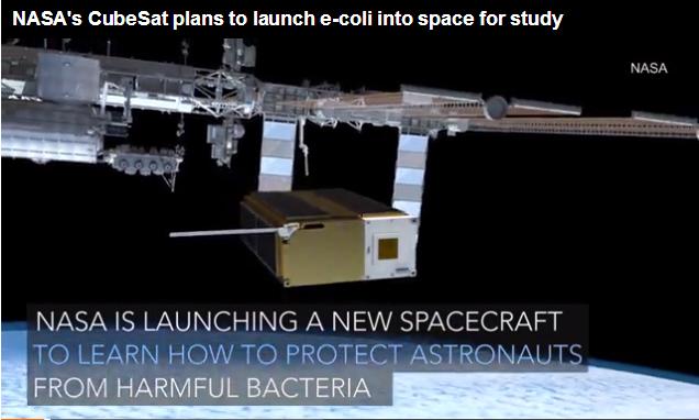 作死?NASA将大肠杆菌送入太空增强耐药性