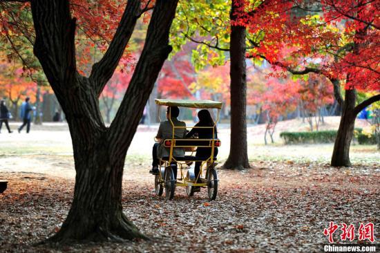 韩媒:韩国春川市加紧筹备迎中国游客 著名景点安排导游