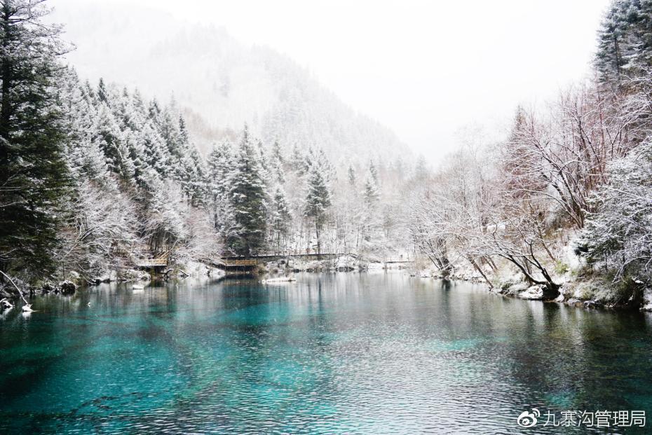 媒体:九寨沟迎来入冬第一场雪 晶莹剔透美如仙境