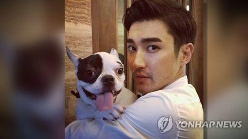崔始源将参加SJ首尔演唱会 爱犬伤人事件后首次露面