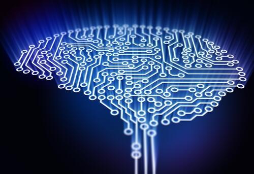 研究:聪明人和普通人的大脑运转方式不同