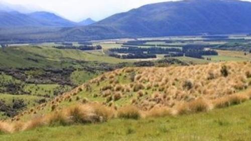 中国侨网中国买家计划购买的Jericho Station牧场,正在等待审批(新西兰天维网)