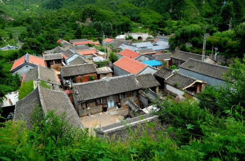 研究文物工作和传统村落保护发展等事项