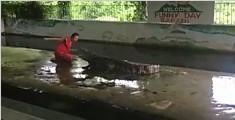 实拍驯兽师手伸进鳄鱼口中 险些被咬吓呆观众