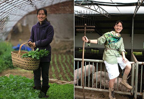 海归美女博士回国种菜养猪 年收入800万