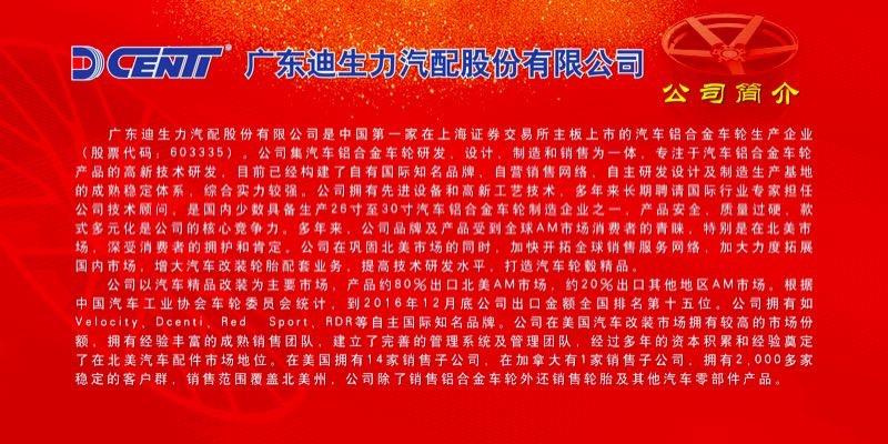迪生力:首次进军中国市场