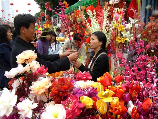 未来广州赏花应该这样赏