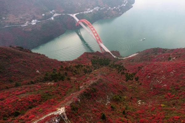 """高峡出平湖:航拍长江三峡两岸满山红叶成""""美丽画卷"""""""