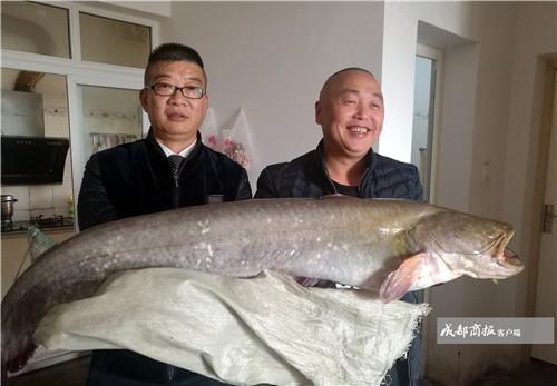 超大!男子用这种钓法钓起1.2米长28斤重大鲶鱼