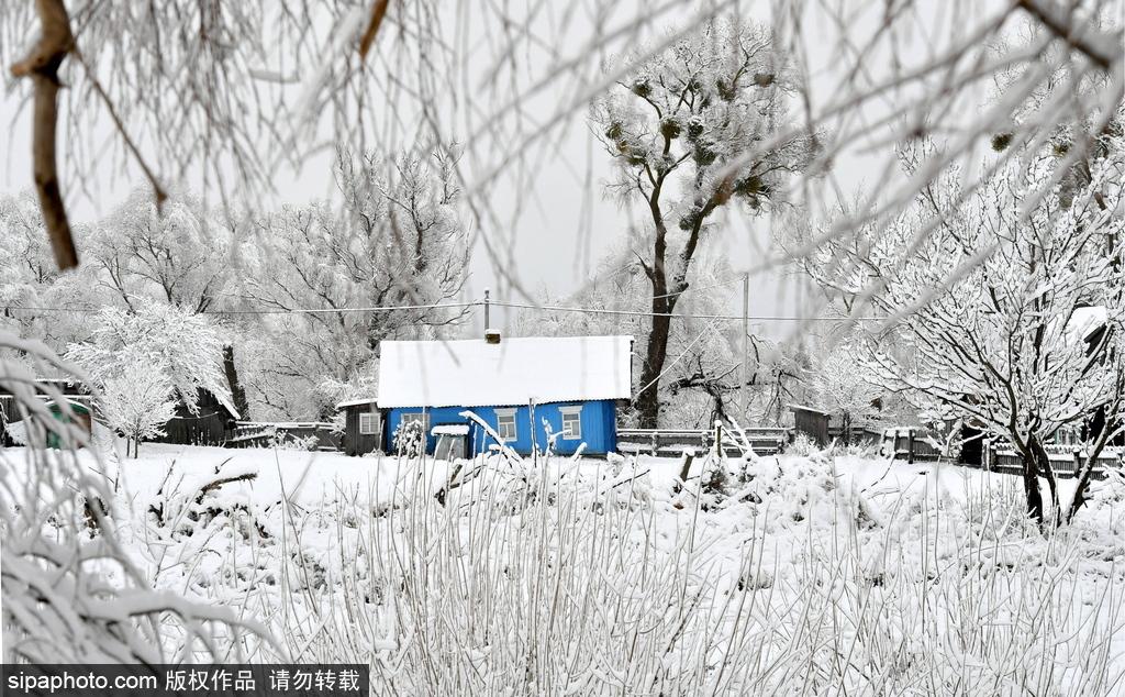 白俄罗斯乡村冬雪覆盖
