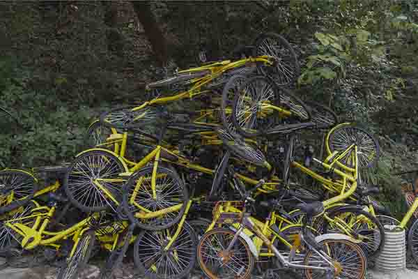 共享单车被弃山林 绵延堆积300米
