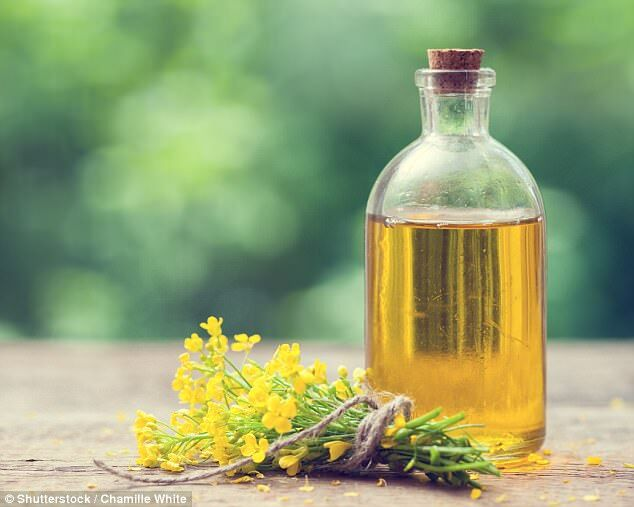 美研究:长期食用菜籽油有损大脑健康 加重老年痴呆