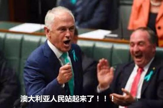 """澳总理:过去选举有10名候选人""""涉华"""" 已被锁定"""