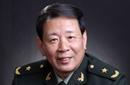 罗援 中国战略文化促进会常务副会长兼秘书长