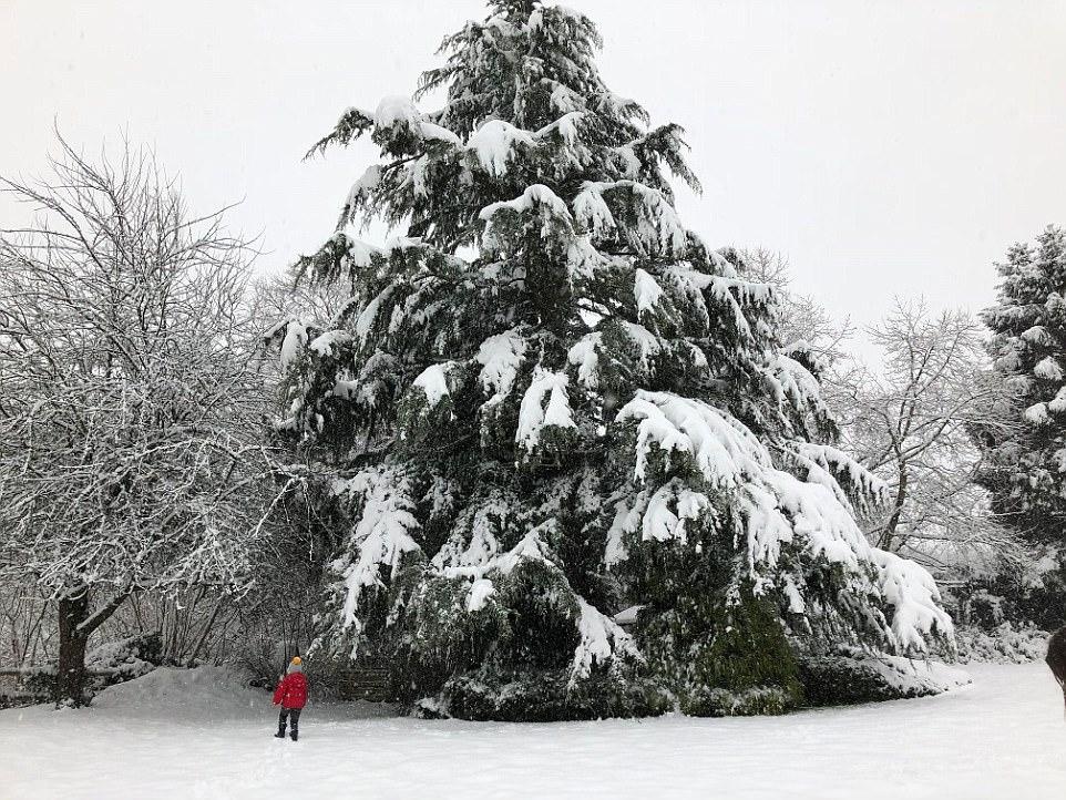 英国多地遭大雪袭击 多所学校停课