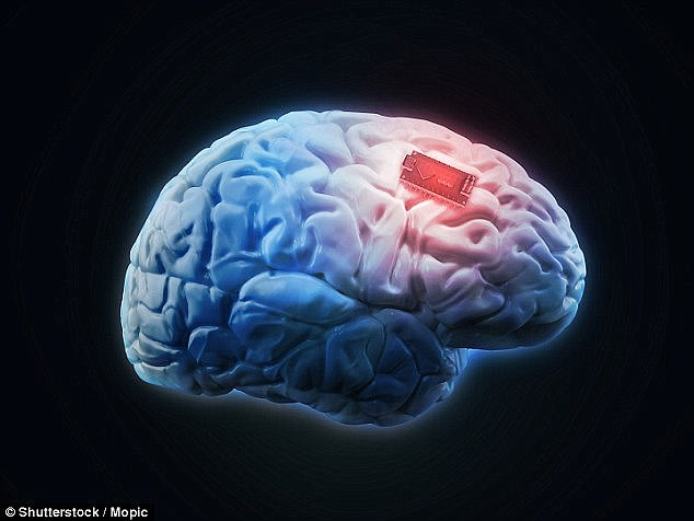 智能芯片创人:AI或助人类实现心灵感应交流