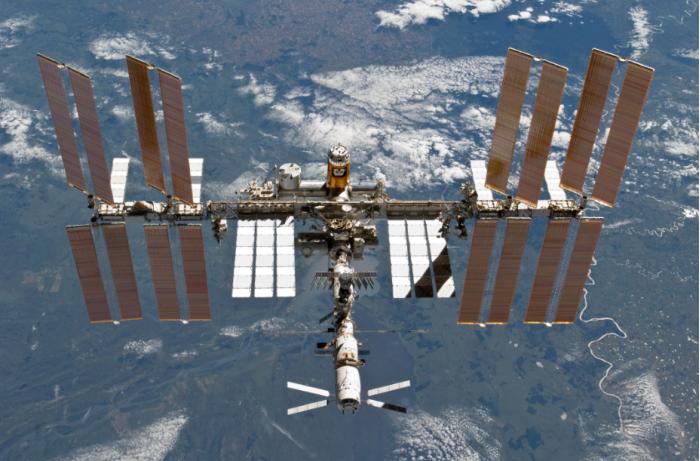 世上最顽强细菌在太空验明正身