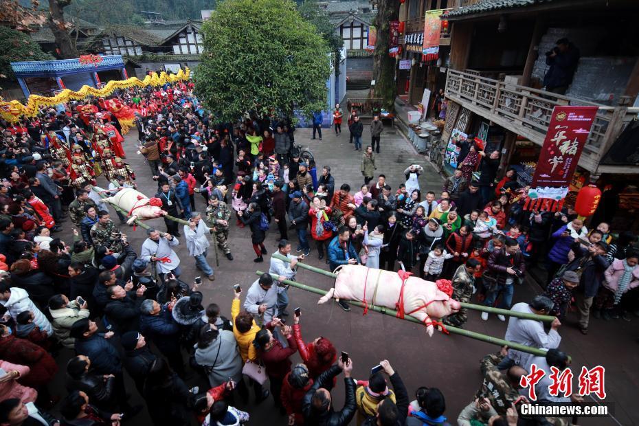 四川雅安年猪文化旅游节开幕