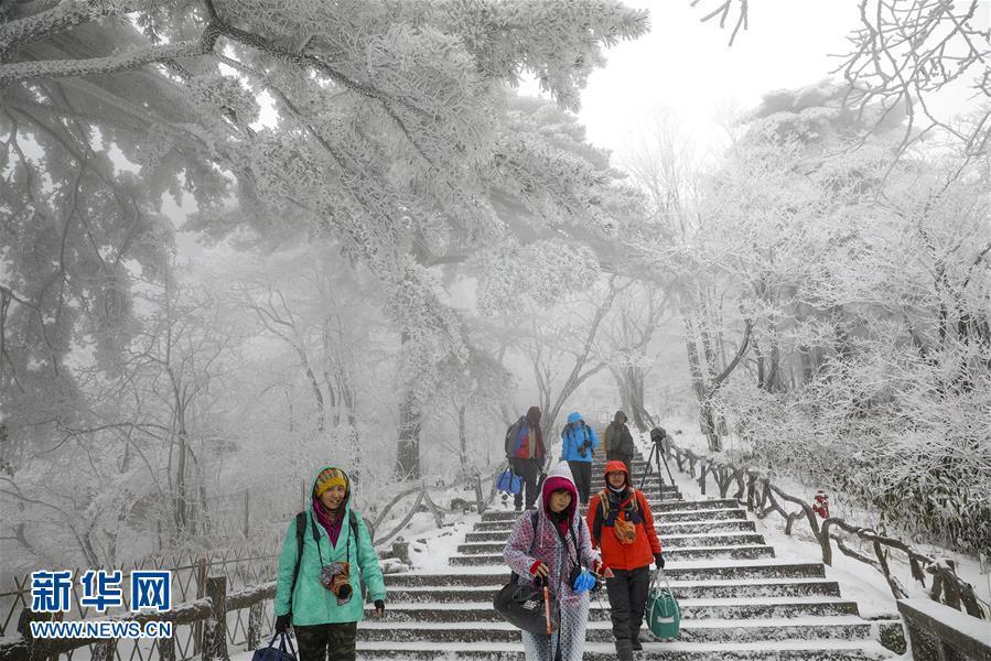 安徽黄山迎来今冬首场降雪