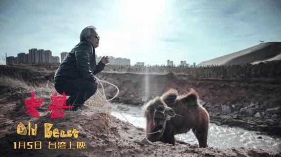 电影《老兽》2018年1月5日台湾上映