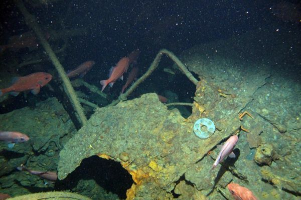 历经103年搜寻 澳大利亚首艘潜艇残骸被发现