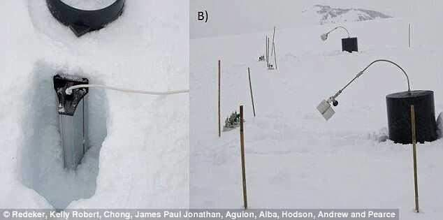 奇迹!科学家首次在极地冰雪中观测到活细菌
