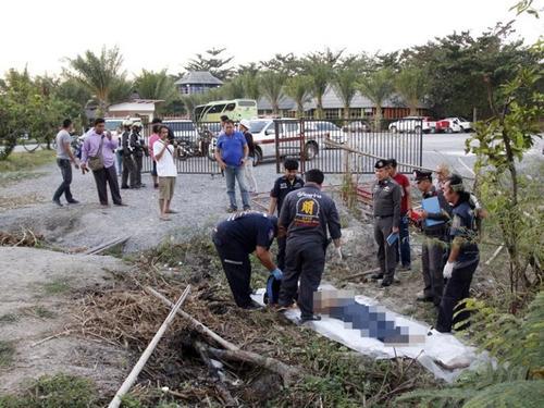 泰媒:游客恶作剧激怒大象 中国领队前往救助被踩身亡