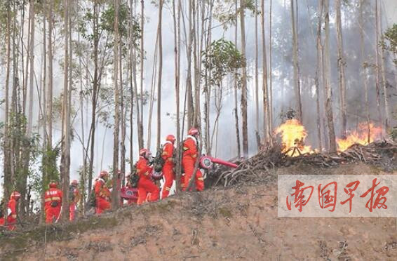 全区森林防火竞赛演练举行 十多架无人机编队上阵
