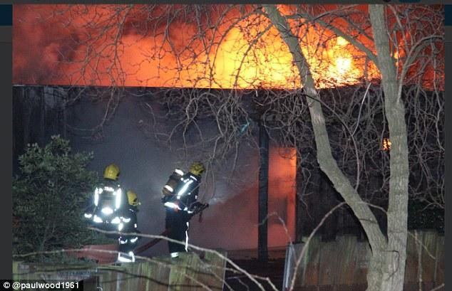 伦敦一动物园发生大火 事故原因及伤亡情况不明