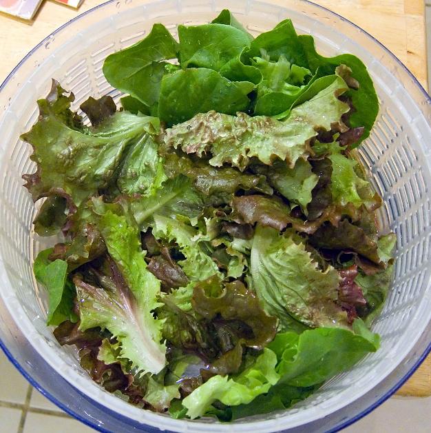 绿叶蔬菜可能会减缓老年人认知下降