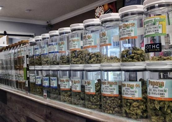 墨西哥拟将大麻制品合法化 非法毒品交易仍严加管控