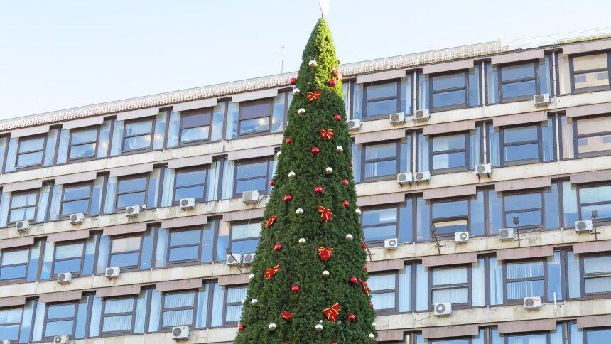 """塞尔维亚""""世界上最昂贵圣诞树""""惹争议 造价高达8.3万欧元"""