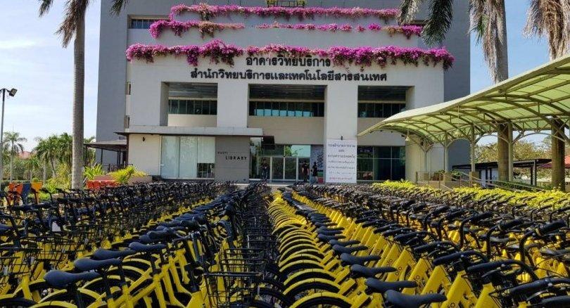 ofo与泰大学成立俱乐部:复制第二个中国市场?