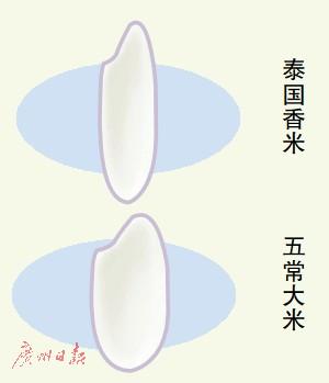 """大米市场鱼龙混杂真假难辨 标称""""五常米""""九成是李鬼"""