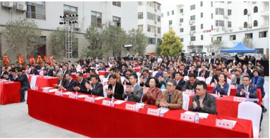 深圳龙城医院三甲康复医院揭牌仪式隆重举行