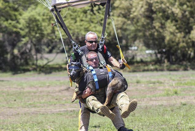 南非反偷猎警犬与执法者跳伞打击偷猎活动