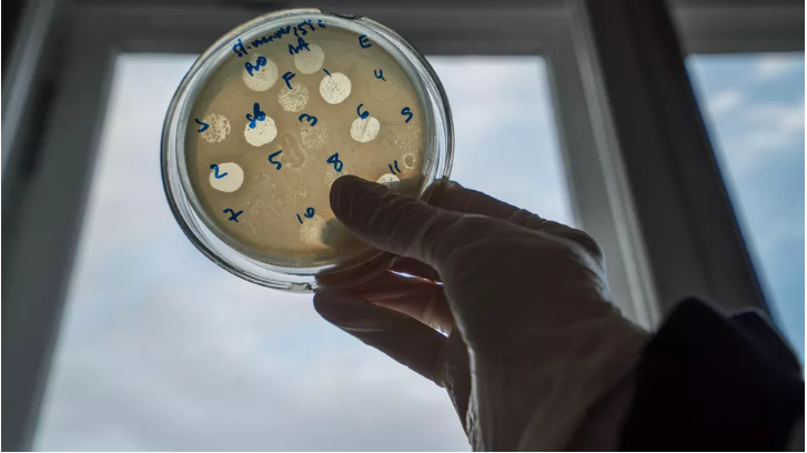 皮肤脱落 极易感染:抗生素不管用 谁能抵抗细菌?