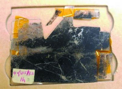 考古新发现:找到地球最古老生命存在直接证据
