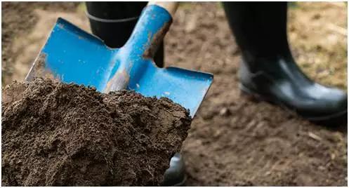 """""""挖""""出来的科学:那些土壤告诉我们的事情"""