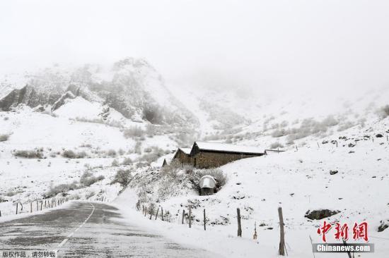 约200名滑雪客受困阿尔卑斯山缆车 已悉数救出