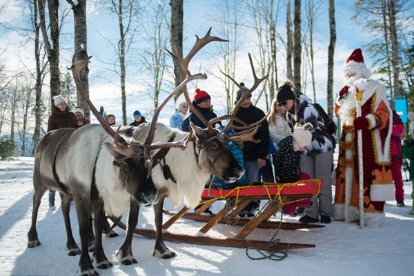 童话之旅!俄罗斯滑雪场可体验鹿拉雪橇