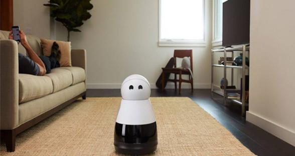 既是宠物又是帮手 这些机器人一定要带回家