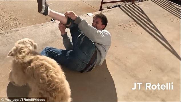 美国一男子测试宠物电击止吠器惨叫连连