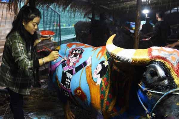 艺高还要牛听话 云南普洱举办国际牛体彩绘大赛