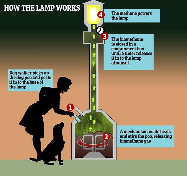 变废为宝 英国景区用狗狗粪便为路灯供能