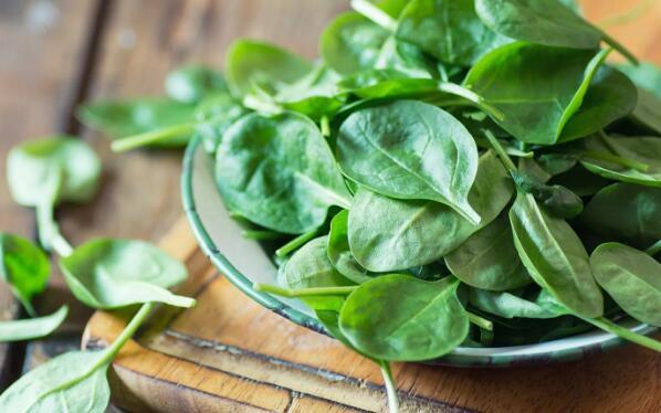 美研究:食用菠菜等绿色蔬菜可预防老年痴呆